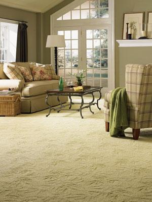 Clean-Carpet-Routine-Care