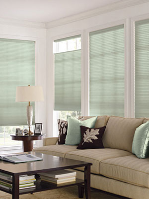 Clean-Window-Treatments-Cleaning-Specific-Materials-3